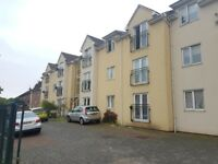 1 Bedroom Flat to Rent - Housing Accepted