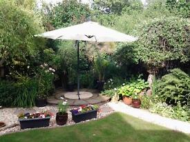 large canterlever parasol, cream shade 2mtr, with base and weights