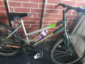 Integra womens nountain bike