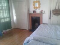Double room available in friendly houseshare off Mill Road, Cambridge