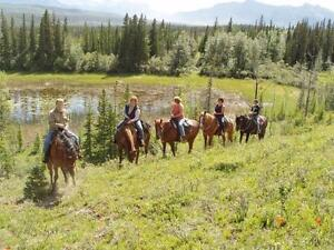 Guided Horseback Trail Rides Near Jasper National Park Edmonton Area image 3
