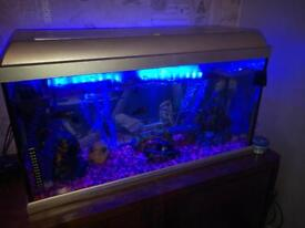 Tropical fish tank including unit
