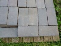 Doulton Victorian Staffordshire Blue Paving Bricks