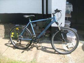 carrera vulcan v-spec 20 inch frame mountain bike