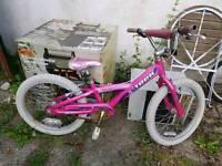 Girls Pink Bike - Trek Mystic