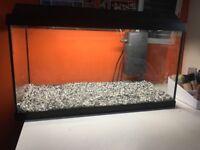 Fish Tank 60LT