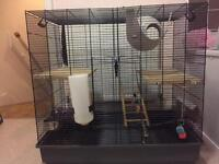 Extra large Rat cage