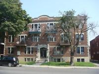 NDG/Cote-des-Neiges 3  ½  – FIRST MONTH FREE !! ALL INCLUDED