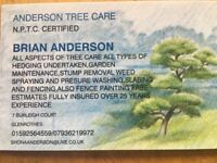 Anderson Tree Care
