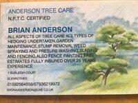 Anderson Tree Care