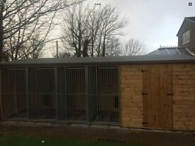Dog kennel run and shed.