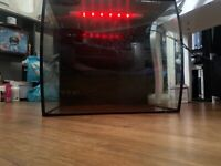 Fluval 57 Litre Fish Tank for sale