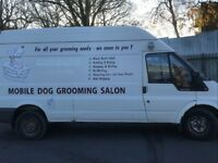 Mobile Dog Grooming Salon Ford Transit LWB High Roof Van 2004 £4500.00