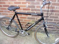 Viking Men's Campus Single Speed Traditional Bike - USED but in great condition