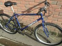 Ridgeback 602 Mountain Bike