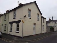 3 bed house to rent close to Newton Abbot town centre