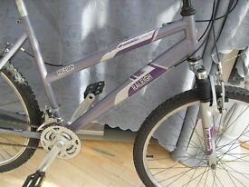 ADULT LADIES RALEIGH MANTIS SUSPENSION MOUNTAIN BIKE IN VGC.