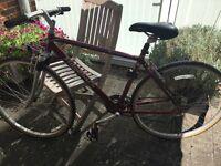 Ladies Ridgeback bullit hybrid bike dark red