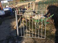 x 10 Steel Gates (Garden)