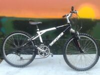 "GT Palomar Triple Triangle 24"" Junior Mountain Bike"