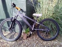 Jump style bike in excellent condition