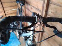 Specialized Dolce Sport Womens Road Bike 54cm frame