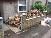 Free logs firewood fire wood for collection
