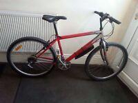 Silverfox Cyclone Mountain Bike