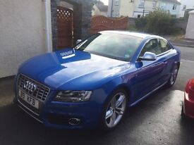 Audi S5 Manual in Sprint blue with Cream Leather