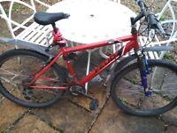 Apollo Feud Men's Mountain Bike
