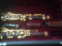 Professional Clarinet for sale, Backun Protege in Bb