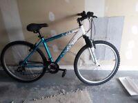 Ladies Mountain Bike. 21 speed.