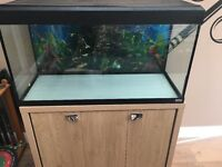 Aquarium with cabinet. 200L. With heater and air machine.