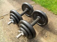 Spinlock Dumbells with Cast Iron Weights