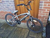 """Child's BMX bike with stunt pegs and 22"""" wheels"""