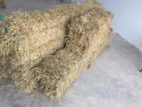 12 bales of straw £2 per bale - collect asap