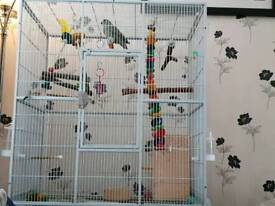 Large cage. Suit bird rat chinchilla etc