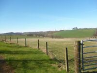 Livery /grazing, Fife.