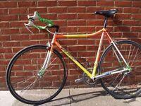 Vintage Jan Janssen Lo Pro Pursuit Bike Columbus Shimano 105