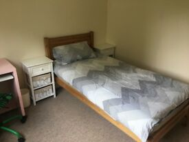 Lovely Room in Livingston