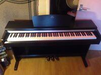 Yamaha Arius Piano YDP135
