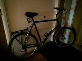 Mens CANNONDALE bike