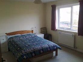 Large Double Room in Friendly House, Quiet Location