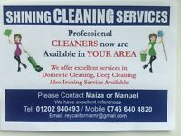 Profesionals cleaners