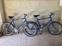 Two Raleigh Mountain Bikes