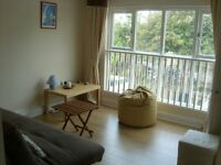 ****Still available**** Top floor studio apartment available for rent in Upper Lewes Road