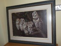 Print beautifully framed of owls - captivating