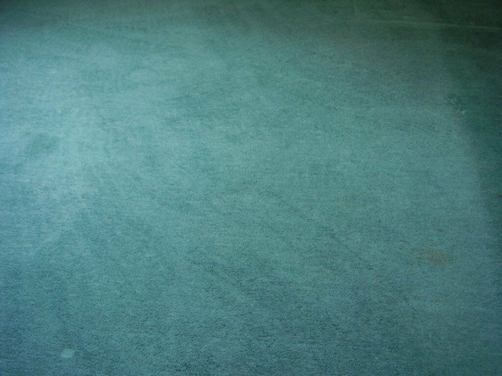 Blue-Green Carpet