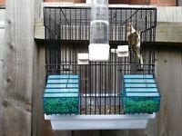 Goldfinch Mule + Bird Cage