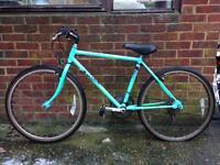 "Raleigh Lizard 18"" mountain bike"